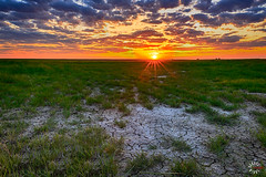 hdr-2_1-2.jpg (kendra kpk) Tags: pink blue sunset green field grass clouds southdakota landscape spring may winner hdr 2016 trippcounty dakotawindsphotography daktawindsphotocom