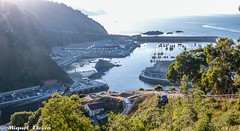 El port de Cudillero (Miquel Lleix Mora [NotPRO]) Tags: espaa es cudillero caminodesantiago principadodeasturias miquellleix