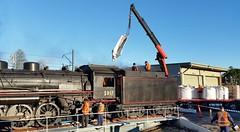 """Kiama Picnic Train"".  5917 takes coal on the Kiama Turntable, Illawarra Railway, NSW, 29th May, 2016. (garratt3) Tags: aus rail steam lachlanvalleyrailway standardgauge 59class kiamapicnictrain nswheritage steamloco railway railways locomotive australia nsw railfan steamlocomotive steampower nswgr illawarra southcoast newsouthwales"