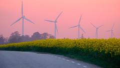 Feel the wind (Hkan Dahlstrm) Tags: sunset sky field yellow photography se skne sweden cropped f71 raps windpower rapeseed trelleborg 2016 skneln powermill xe2 160sek xc50230mmf4567ois trelleborgv 2419052016204544