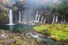 Shiraito Falls 7867 (kbaranowski) Tags: autumn nature water rain waterfall maple colorful fallfoliage japanesemaple nippon nihon beautyinnature shiraitofalls krzysztofbaranowski 2016krzysztofbaranowski