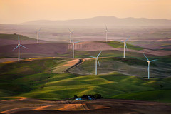 Palouse Wind Farm (EdBob) Tags: wind turbines farm renewable energy electricity steptoe steptoebutte steptoebuttestatepark sunset palouse landscape spring springtime farmland farming farmhouse blades prop propellers plowed land environmental electrical cleanenergy washington washingtonstate easternwashington edmundlowephotography edmundlowe allmyphotographsare©copyrightedandallrightsreservednoneofthesephotosmaybereproducedandorusedinanyformofpublicationprintortheinternetwithoutmywrittenpermission wwwedmundlowephotocom