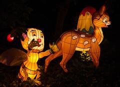 _DSC9599_2 (Elii D.) Tags: light fish flower animal night zoo monkey neon dragons lantern lampion dargon