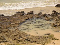 Felskste (esseffdeearr) Tags: portugal algarve olhos dagua riu guarana praia da falesia albufeira portimao vacation