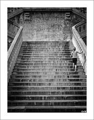 stairs (GuitarGeert) Tags: blackandwhite girl stairs walking 50mm nikon zwartwit 50 trap d700 silverefex