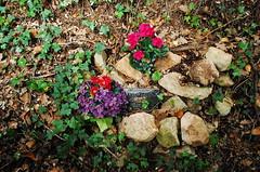 plaque souvenir (aqueduc) Tags: france mas frankreich mort du crime pont maison pontdugard francia languedoc gard assassin mystere meurtre assassinat argilliers argillier