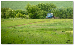Tractor (Steve Sutherland Photography) Tags: uk england nature fauna landscape flora nikon unitedkingdom walk vista essex tanks eastanglia florafauna walkies bulmer d7100 stevesutherland stevesutherlandphotography