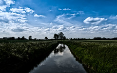 small creek (wianphoto) Tags: blue red summer sky tree water field sunshine clouds creek germany photography photo stream cloudy meadow wideangle wideanglelens smallstream olympus918mm olympus918mmm olympusomdem10 wianphoto