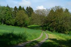 Mein Kraichgauer Hgelland (infactoweb) Tags: wandern bruchsal hgel kraichgau infactoweb hgelland