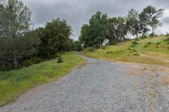 RHM_1632-1383.jpg (RHMImages) Tags: california landscape us nikon unitedstates auburn trail foresthill d810