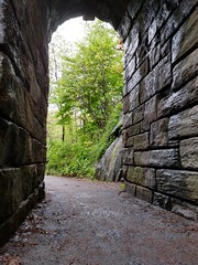 through the looking arch (awilliamseynon) Tags: tree nature centralpark trails arches