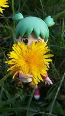 """Hello spring..."" (Maude80) Tags: anime flower girl spring action figure koiwai yotsuba"