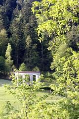 Allerheiligen II (tillwe) Tags: tree green blackforest tillwe allerheiligen oppenau 201605 norschwarzwald hochzeitsfeierjd svwehrenmal