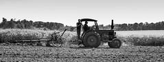 ploughing (Fotos aus OWL) Tags: traktor landwirtschaft bulldog lanz schlepper pflug pflgen traktorentreffen