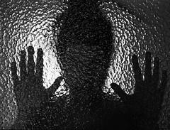 *FILM* captured (Philip Schulze) Tags: woman film backlight analog photography blackwhite hands fotografie head captured human refraction hp5 rodinal nikonfe glas selfdeveloped gefangen schwarzweis kleinbild