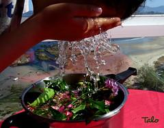 auga de Xan Xon (Saint John magic water) (talourcera) Tags: sanjuan tradition costumbres summersolstice tradicin solsticiodeverano augadexanxon xanxon aguadesanjuan ancestralcustoms