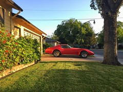 Morning Rays (misterbigidea) Tags: street morning red classic beauty car stingray weekend sunday suburbia neighborhood driveway chevy hotwheels parked corvette sportscar vroom chervrolet cityscenic meanstreetsofstockton