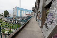 CrueSeine_0023 (cyberien 94) Tags: streetart seine graffiti paysage marne valdemarne alfortville confluent ivrysurseine charentonlepont