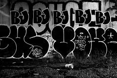 "BJORK6 BOGUS VOYER • <a style=""font-size:0.8em;"" href=""http://www.flickr.com/photos/80423674@N07/27409613011/"" target=""_blank"">View on Flickr</a>"