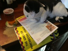 Bitty reading all about #Pussyfooting @knotworksox 26-27 July @kingssalford 28-30 July @EagleInnSalford #PetsWithProgrammes @GMFringe (gmfringe) Tags: new uk summer england english yellow festival bar cat manchester actors pub feline edinburgh play cheshire northwest theatre britain stage events yorkshire political pussy performance salfordquays lancashire bee entertainment lgbt awards trans northern pint drama salford oxforduniversity lowry gender hamlet mikebennett workshops kingsarms chevrons womanhood interviews pleasance bobyoung devised funnywomen mediacity eagleinn pussyfooting tallstories shorttails whatson gmfringe greatermanchesterfringe charliehartill kinglearalone yvettewarburton theinventionofacting petswithprogrammes