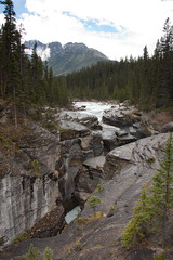 YBA-7416 (Differentialdx) Tags: banffnationalpark icefieldsparkway mistayacanyon