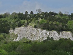 The White Cliffs of Surrey (Deepgreen2009) Tags: cliff white chalk woods surrey quarry betchworth