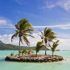 #BoraBoraSeria #BoraBoraislandsSeria #islandSeria #indiaOceanIslandsSeria #indiaOceanSeria #IndiaOcean #TreesLifeSeria #TreesSeria #AgaclarSeria #PalmiyeSeria #PalmiyeAgaclariSeria #PalmTrees #PalmTreesSeria #BotanicLifeSeria #Palmiye #indiaOceanislandsFl (mustafagavsar) Tags: island palmtrees palmiye borabora indiaocean indiaoceanseria indiaoceanislandsseria treesseria agaclarseria pazar2015seria pazarseria islandseria botaniclifeseria floraseria treeslifeseria mayis2015seria pazarmayisseria may31mayis2015 mayis31seria boraboraseria boraboraislandsseria palmiyeseria palmiyeagaclariseria palmtreesseria indiaoceanislandsfloraseria