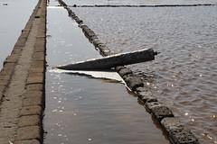 Saline (Tommaso Manzi Photos) Tags: italy tommaso sicily saline sicilia salina trapani saltworks manzi tommasomanzi