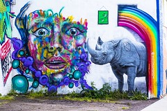 Rainbow Rhino (Chris B Richmond) Tags: street urban color colour art colors face grass wall corner canon painting graffiti rainbow eyes colorful paint purple tn nashville outdoor tennessee vibrant crying bubbles lips spray rhino dslr psychedelic rhinoceros sidwalk oustide