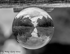 Woods 2 (crusha5050) Tags: crystalball crystal ball reflection bokeh depthoffield greatfen holme