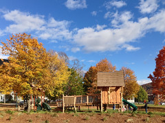 2015-10-16 15.26.59.jpg (bristolcorevt) Tags: playground bristol vermont outdoor swings structure treehouse bristolvt towngreen
