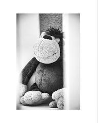 Secret d'enfance (tifanm_laurent) Tags: blackandwhite bw blancoynegro childhood toy happy noiretblanc bn enfant doudou bnw rideau jouet transparence plushtoy peluche singe whiteandblack enfance blancoenero