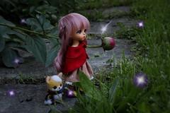 Kokoro and Magello's Plight #3 (Arthoniel) Tags: toy outside lights doll outdoor handmade ooak magic tan collection fairy fox figure limited mage hani kokoro needlefelt latidoll lati magello latiyellow masterofdragon bjdmballjointeddoll