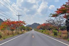 Endless Journey (Anushri Eswaran) Tags: travel orange highway endless
