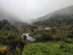 Despite raining every hour I was there the muted and desaturated landscape of the Páramo had the feeling of a desert. #theworldwalk #travel #colombia