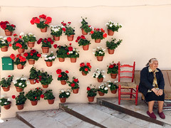 The woman of the flowers (jj2284) Tags: street flowers woman house flores flower tourism beautiful beauty wall spain quiet flor streetphotography spanish oldwoman typical burgos calmness anonimous