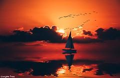 What a wonderful world! (gusdiaz) Tags: photoshop photomanipulation digital art arte atardecer bote sailboat sereno tranquilo vsco vscocam beautiful summer verano birds aves gaviotas