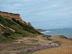 coastal path at Barton on Sea [explored] (carol_malky) Tags: sea coast south isleofwight coastline incomingtide southcoast coastalpath pinkflowers bartononsea hazyday explored