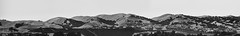 leopard land (pbo31) Tags: california nikon d810 bayarea boury pbo31 summer july 2016 northerncalifornia livermore hills wine eastbay alamedacounty panoramic large panorama stitched farm country estate blackandwhite winery wente rubyhill
