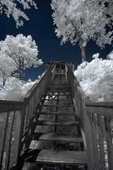 gazebo (Joss-Linn Gagn) Tags: trees nature stairs arbres infrared marches infrarouge josslinngagn