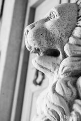 _DSC0056 (epistimigallery) Tags: street door old city travel blue windows light sky moon white church yellow statue bar club night vintage dark island doll market photos pics lion bikes retro fullmoon greece paros cyclades maniqque
