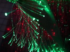Fibre optic fabric (Rain Rabbit) Tags: technology dress fabric eeg wearable optic fibreoptic fibre amplifying fibreopticdress thinkerbelle emotivewearables eegdress thinkerbelleeegdress