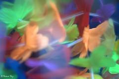 _DSC9925_v1 (rypl26) Tags: france popart abstraction flowerpower fra psychdlique acidule