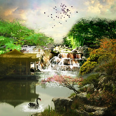 The cottage on the lake (jaci XIII) Tags: plants lake bird animal gua lago waterfall swan plantas cottage vegetable ave cachoeira cisne vegetais chal
