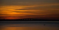landsbron (blomberg.viktor) Tags: ocean bridge sunset sea sky sun sol contrast swan nikon outdoor himmel bro kontrast vatten havet hav stersjn kalmar land solnedgng svan landsbron frjestaden kalmarsund nikond5300
