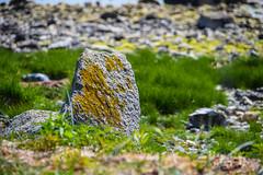 By the sea (Maria Eklind) Tags: sea sky beach nature strand se countryside boat skne sweden outdoor stones himmel sverige roads hav stersjn trelleborg landsbygd skneln