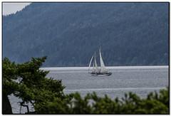 _DSC1525-aa (tellytomtelly) Tags: sailboat washington zodiac orcasisland schooner sucia suciaisland suciaislandstatepark