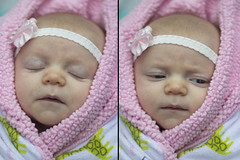 cocoon (colorfulclare) Tags: old two baby cute love beautiful childhood canon snuggle diptych infant photos dream adorable 7 bow blanket newborn cuddly approved weeks cocoon snuggly t3i
