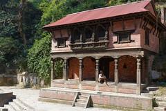 DS1A3884dxo (irishmick.com) Tags: nepal kathmandu 2015 guhyeshwari bagmati ghat