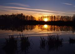 Die Stille ist das Atemholen der Welt. (Friedel-Marie Kuhlmann) (mabumarion) Tags: sunset sun lake water colors clouds silhouettes olympus lakeside silence calmness breathof windmühlenbruch